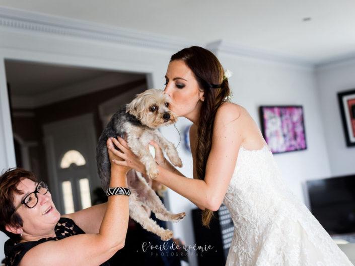 se marier avec son animal de compagnie, un amour de chien, mariage et animal de compagnie